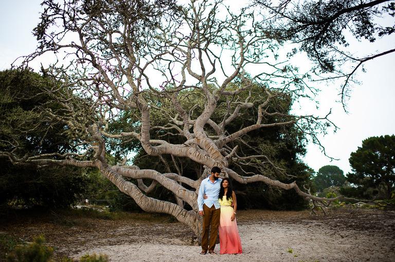 2(pp w768 h510) Shivira & Prateek   Carmel Beach, California
